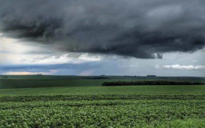 Chuvas de outubro animam produtores; correção de solo é fundamental